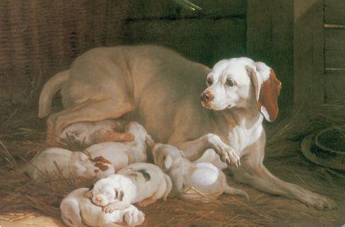 Jean-Baptiste Oudry. «Perra amamantando a sus cachorros» (1752). (Museo de la Caza y la Naturaleza, Francia).