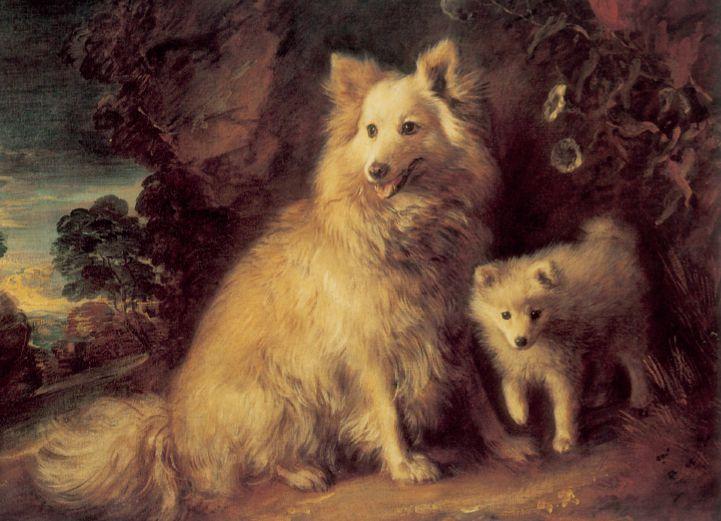 Thomas Gainsborough. «Perra de Pomeramia y cachorro» (1777). Tate Gallery (Londres).