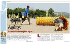 Agility: la complicidad entre perro y guía