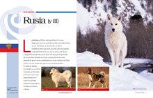 Rusia (y III)
