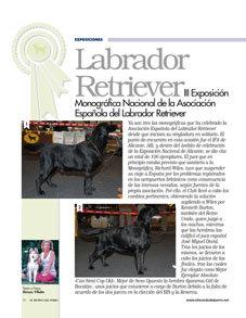 Labrador Retriever. III Exposición Monográfica Nacional de la Asociación Española del Labrador Retriever