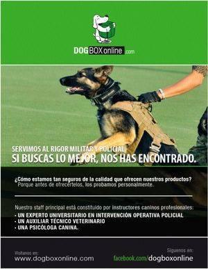 DOGBOX ONLINE. El mejor material para tu perro a un solo clic�