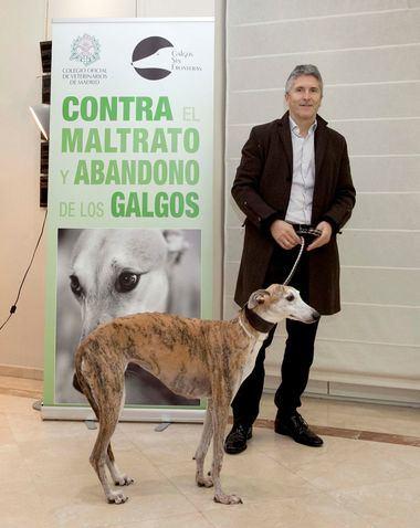 Grande-Marlaska con su Galgo