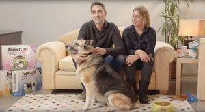 Frontline® Tri-Act patrocina el proyecto Grandes perros para grandes personas