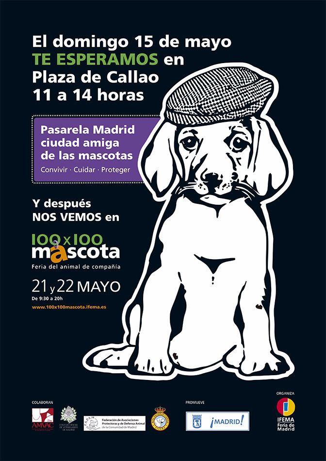 La Real Sociedad Canina participa en la pasarela 'Madrid, ciudad amiga de las mascotas'