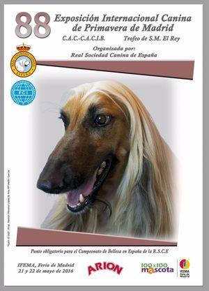 La Real Sociedad Canina de España organiza la 88 Exposición Internacional Canina de Primavera