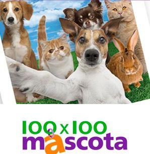 Mañana, sábado 21 de mayo, arranca 100x100 MASCOTA, el paraíso para los amantes de los animales de compañía