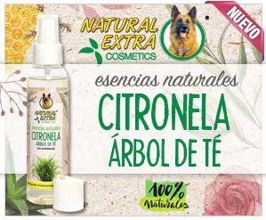 ESENCIA DE CITRONELA CON ÁRBOL DE TÉ NATURAL EXTRA COSMETICS