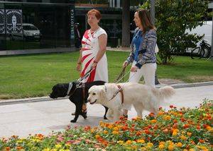 Los perros gu�a de la ONCE celebran 25 a�os al lado de los ciudadanos de Madrid