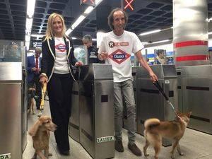 Los perros podrán viajar libre y gratuitamente por toda la red de Metro de Madrid