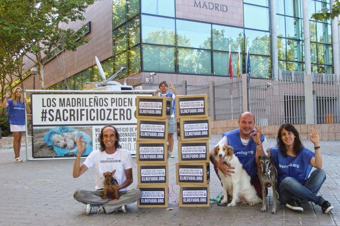 La ley que aprobara el #sacrificiozero de perros y gatos abandonados entra de pleno en la Asamblea de Madrid