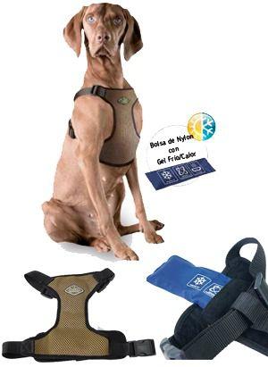 Novedoso arn�s con efecto fr�o y calor para perros