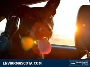 El equipo de transporte de mascotas de Lamaignere informa de las nuevas normas