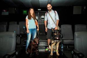 Cinesa y Fundaci�n Affinity acomodan a m�s de 30 perros en una sesi�n de cine petfriendly