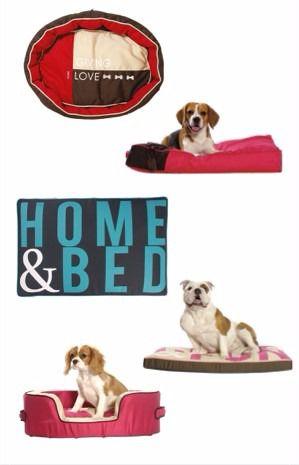 Complementos exclusivos para mascotas especiales - Novedades para mascotas ...