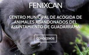 Fenixcan, un nuevo concepto de protección animal