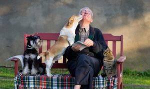 Día internacional de las personas mayores, 1 de octubre