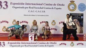 Macarena Rueda, mejor presentador joven de la 33 Exposición Internacional Canina de Otoño