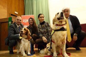 Zoetis apoya las Intervenciones Asistidas con Animales (IAA)