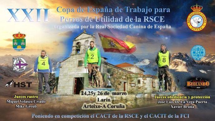 Este fin de semana Arteixo (A Coruña) celebra la XXII Copa de España de Trabajo para Perros de Utilidad