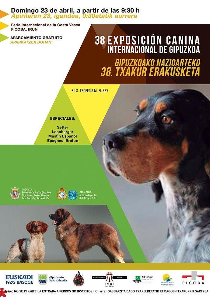 Más de 600 perros participarán este fin de semana en la XXXVIII Exposición Canina Internacional de Gipuzkoa en Irún