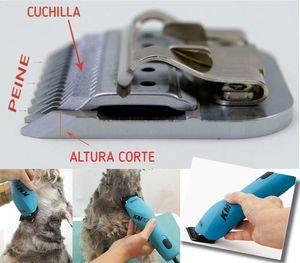 Cabezales de peluquería caninaAltura del corte