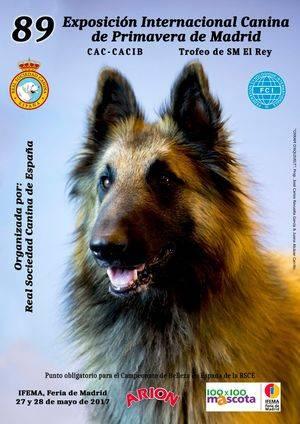 La Real Sociedad Canina de España organiza la 89 Exposición Internacional Canina de Primavera