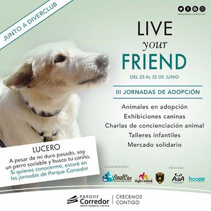 III Jornadas para adopción de mascotas en Parque Corredor