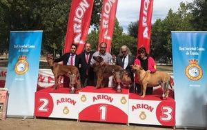 Exposición Nacional Canina de Razas Españolas