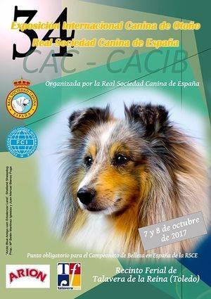 Más de 4.000 perros se darán cita en la Exposición Internacional Canina de Otoño en Talavera de la Reina (Toledo)