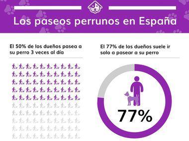 Un 21,9 % de los hogares en España cuentan con un miembro canino