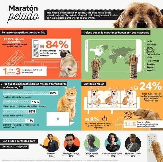 España es el país europeo que más maratones hace con sus mascotas
