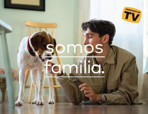 Scalibor®, el único collar indicado frente a la leishmaniosis, estrena anuncio en televisión