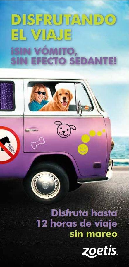 Disfruta de tus viajes: controla el mareo de tu perro sin efecto sedante