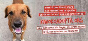 Kiwoko lanza kiwokoadopta.org, la plataforma para ayudar a mejorar la vida de todos los animales que no lo han tenido fácil