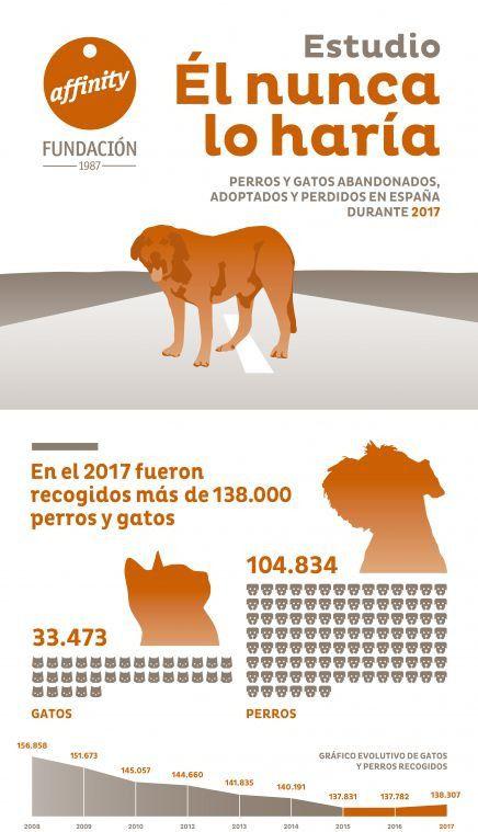 Fundación Affinity alerta de que la cifra de abandono de perros y gatos sigue estancada