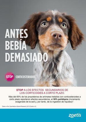 """Zoetis lanza la campaña """"Stop a los efectos secundarios de los corticosteroides a corto plazo"""""""