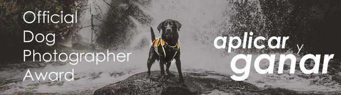 Premio total de más de 5000 USD para las mejores fotografías con perros