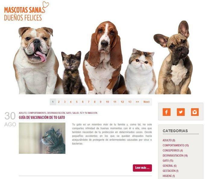 """El blog de Zoetis para propietarios de perros y gatos """"Mascotas sanas, dueños felices"""" se renueva"""