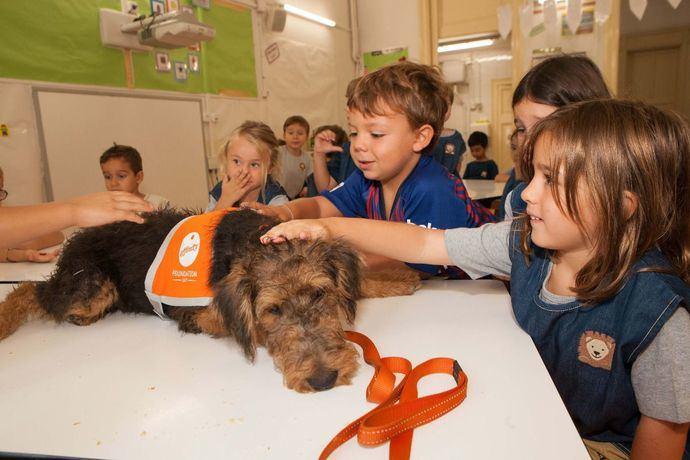 Perros de terapia para superar el primer día de colegio