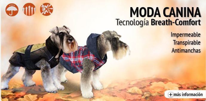 Abrigos, Capas y Chubasqueros para perros