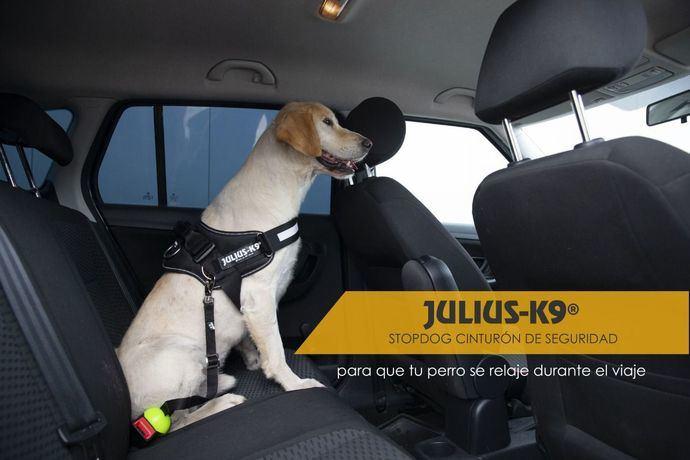 ¡NOVEDAD MUNDIAL! JULIUS-K9® STOPDOG CINTURÓN DE SEGURIDAD
