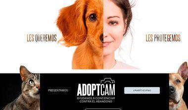 Boehringer Ingelheim lanza una campaña para concienciar sobre la adopción responsable de mascotas