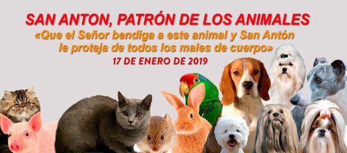 Cientos de animales reciben la bendición de San Antón