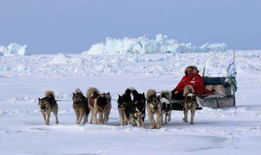 """Manuel Calvo, en su trineo y algunos de los perros que han participado en """"Desafío Ártico 2019"""""""
