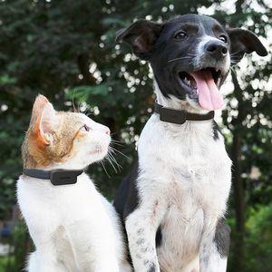 INVOXIA PET TRACKER Sepa siempre dónde está su mascota