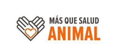 #MásQueSaludAnimal, el proyecto de social media de Zoetis España