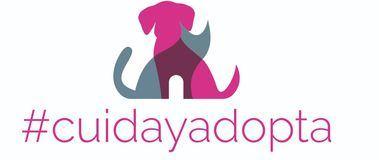 #Cuidayadopta, la nueva comunidad de adoptantes impulsada por los veterinarios municipales con el apoyo de Zoetis