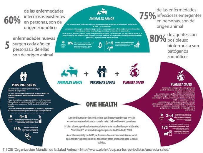 La celebración del día mundial de la zoonosis nos recuerda que animales y personas compartimos una única salud