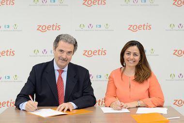Más de 5.000 animales desparasitados con productos de Zoetis en centros de acogida municipales de toda España